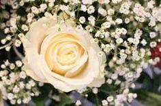 Florystyka - dekoracje ślubne