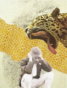 Collage. black and white picture and colorful animal connect the situation of the entire image.