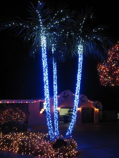 132 Best Lighted Christmas Palm Tree Decorations Images Xmas Coastal