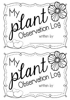 Your littles will love watching their plant grow and keeping track of its progress in this fun and easy daily plant observation log! Best Picture For finding your career quotes For Your Taste You are Teaching Plants, Teaching Science, Science Curriculum, Teaching Ideas, How Plants Grow, Growing Plants, Journal Questions, Plant Science, Career Quotes
