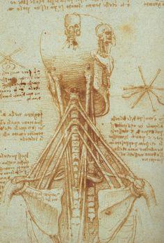 Leonardo Da Vinci Paintings Drawings 78.jpg