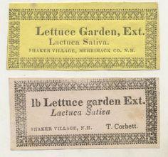 Shaker Lettuce Garden Ext.