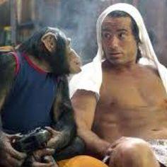 Don't judge me monkey...