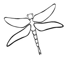 Dragonfly Animal Coloring Page For Kids