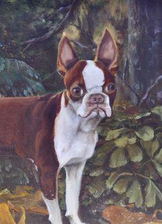 vintage boston terrier painting