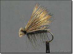 The always effective Black Elk Hair Caddis.  Be sure to have this pattern in sizes 14 to 18.