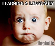 Five Common Excuses Not To Learn a Foreign Language - lingholic