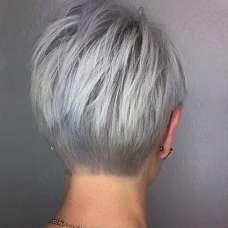 Short Hairstyle Grey Hair - 3