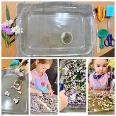 My favorite sensory activity to date! Add some water to a small dish and let your little one practice cutting. Add tea bag or glitter to optimize the sensory experience. Hours of fun! Sensory Experience, Sensory Activities, Preschool, Lunch Box, Dish, Glitter, Tea, My Favorite Things, Garden