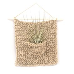 Add more dimension to your gallery wall with a woven air plant hanger.