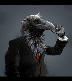 Un corbeau sur un corps d'homme
