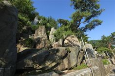 野心作の岩 - WolMyeongDong(キリスト教福音宣教会)