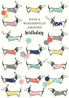 Have A Wonderfully Amazing Dachshund Birthday Greeting Card