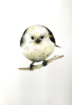 Excited to share the latest addition to my shop: watercolor long-tailed tit bird painting / illustration print. Unique Paintings, Dark Matter, Poster On, Watercolor Art, Bird, Art Prints, Studio, Illustration, Etsy Shop