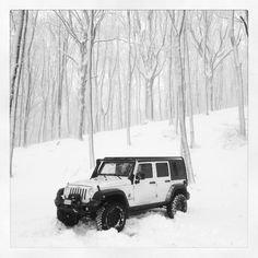 White out Jeep I'll have to take a picture of my jeep in the woods( green out jeep) Cool Photo! Re-Pinned by www.JeepDreamsUSA.com