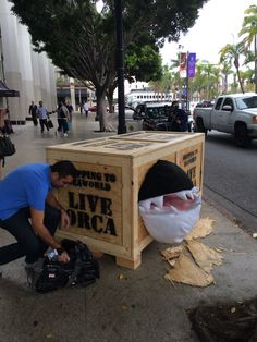 "Screaming 'Orca' Fated for SeaWorld Urges Public to Watch 'Blackfish': A crate emitting piercing distress calls and emblazoned with ""Shipping to SeaWorld: Live Orca"" appeared in San Diego yesterday. A crowd gathered and stood riveted while PETA members revealed the captive inside: a stuffed orca there to draw attention to tonight's television premiere of the critically acclaimed documentary Blackfish on CNN Primetime at 9 p.m. EDT."
