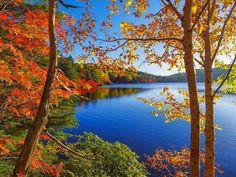 爽秋[Explored] by yukio.s #autumn  #fallcolors  #water  #river  #trees …