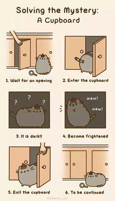 Pusheen Cat♥