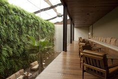 QUADRO VIVO | Jardins Verticais e Paineis Verticais | 11.3060.5060 Vertical Gardens, Green Walls, Plants, Luxury Wedding, Vegetable Garden, Living Alone, Landscaping, Frames, Garden
