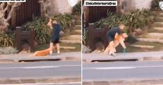 Decide volver a casa después de pasear y la reacción de su perro deja a todos sin palabras Golden Retriever, Wrestling, Coming Home, Hand Washing, Animal Rights, Decision Making, Parks, Pets