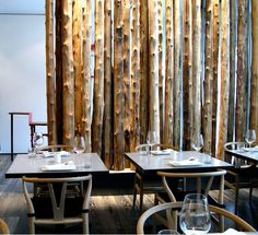 Walls | Installation | Birch Trees