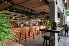 LW Design's Zabeel House hotel in Dubai showcases a relaxed take on luxury Linear Lighting, Bar Lighting, Lighting Design, Timber Slats, Timber Panelling, Exposed Ceilings, Exposed Brick, Koi, Restaurant Lighting