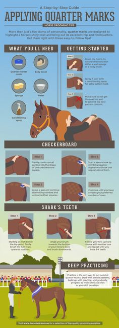 Helpful step by step guide on adding quarter marks to your horse's coat.