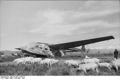The Gotha Go 242 was a transport glider used by the Luftwaffe during World War II. It was an upgrade over the DFS 230 in both cargo/troop capacity and flight characteristics. Though it saw limited action, it appeared in multiple variants.