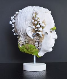 Decay. 14x9x9 mixed media sculpture. Head, mushrooms, moss, tranches, gypsum, plaster, face cast, male face, modern, contemporary, bold, conceptual, one with nature, Natalia Berglund.