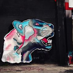 Shadowmonsterbear in Miami