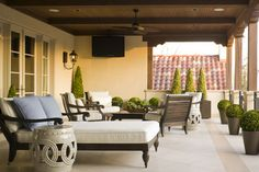 Private Residence - Modern Pool & Garden - modern - deck - dallas - Harold Leidner Landscape Architects