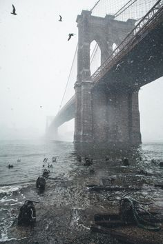 Brooklyn Bridge by Ian Buosi  (ian-buosi-photo.tumblr.com)