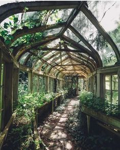 Overgrown Greenhouse If we could wave a wand, we'd want to restore these gorgeous abandoned houses right now. Exterior, Abandoned Places, Abandoned Houses, Abandoned Mansions, Abandoned Castles, Dream Garden, Future House, Beautiful Places, Scenery