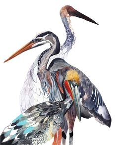 A layer of birds. A Brown Pelican, Tri-colored Heron, and a Siberian Crane. Pelican Heron and Crane Archival Print by unitedthread on Etsy
