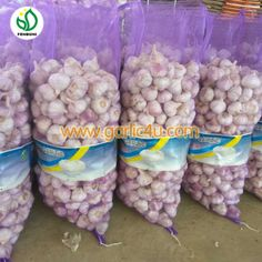 The garlic skin have a little purple or red Purple Garlic, Chinese Garlic, How To Store Garlic, Fresh Garlic, Red