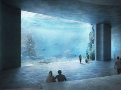 Okay, this isn't due to open until but I probably won't make it to Basel (Switzerland) before so it's all good. Aquarium Architecture, Futuristic Architecture, Architecture Design, Basel, Aquarius, Underwater Room, Recurring Dreams, Home Aquarium, Salt Water Fish