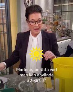 """TV4 Nyhetsmorgon on Instagram: """"@marleneshusmorstips gästade Nyhetsmorgon och pratade om ättika - mirakelmedlet! ☀️🧹🧽🧼 Se hela klippet på TV4 Play!"""""""