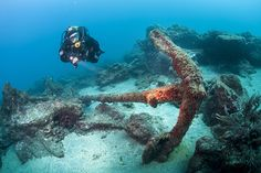 Explore the scuba diving of the Azores