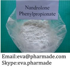 Nandrolone Phenpropionate   Synonyms: durabolin   CAS: 62-90-8   EINECS: 200-551-9   Assay: 98% min.  Packing: foil bag or tin.  Delivery: Express courier.  MOQ: 10 grams.  Character: White crystalline powder.   Usage: pharmaceutical material, Steroid hormone, Anabolin. As a male hormone and anabolic hormones.    email:eva@pharmade.com Skype:eva.pharmade http://www.buyrawsteroid.com/