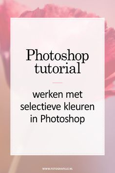 tutorial - verscherpen met high-pass in Photoshop - Fotografille