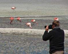 New Photographic Expeditions sponsored by Nikon Inc.     http://www.explora.com/special-interests/photographic-expeditions/
