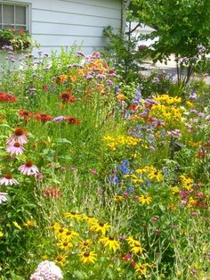great idea! forget mowing every inch of your lawn and plant wildflowers instead. save gas save money save time and go pick yourself a bouquet instead of buying one. #EarthDay #landscapefrontyardslope