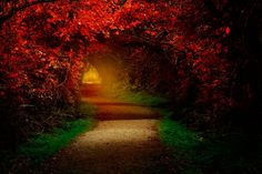 Path - null