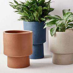 Elevate your patio, deck or terrace with our shapely Bishop Pedestal Planters. Made from frost-proof earthenware so you can leave them outside year-round, they add a pop of color, height and drama to your plants. The pot has drainage holes and lif… Wood Planters, Outdoor Planters, Ceramic Planters, Planter Pots, West Elm Planter, Indoor Outdoor, Potted Plants, Indoor Plants, Keramik Design
