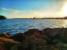 #fineartphotography #naturephotography #bluesky #bluewater #miami #florida #missingbluewater #photostory #artistsonpinterest #photographersonpinterest #musiciansonpinterest #writersonpinterest #originalphotography