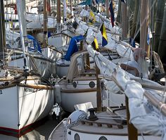 30 Best Beetle Cat images | Sailing, Wooden boats, Sailboat