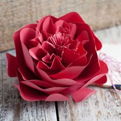Step by step instructions and printable on how to make a paper peony.