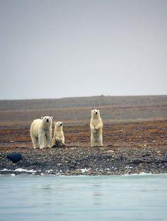 Northwest Passage.