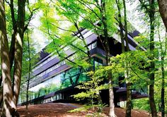 Rehabilitation Center with Nature Ingredients in a Stimulating Environment