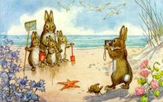 Book illustration, Molly Brett